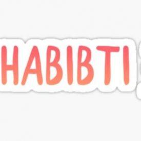 "Vrouwencafé ""Habibti"": voor nieuwkomers en Nederlanders"